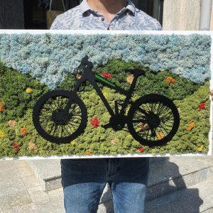 Tablou bicicletă cu licheni stabilizați